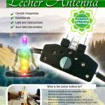 Poster Lecher Eng reducido 2