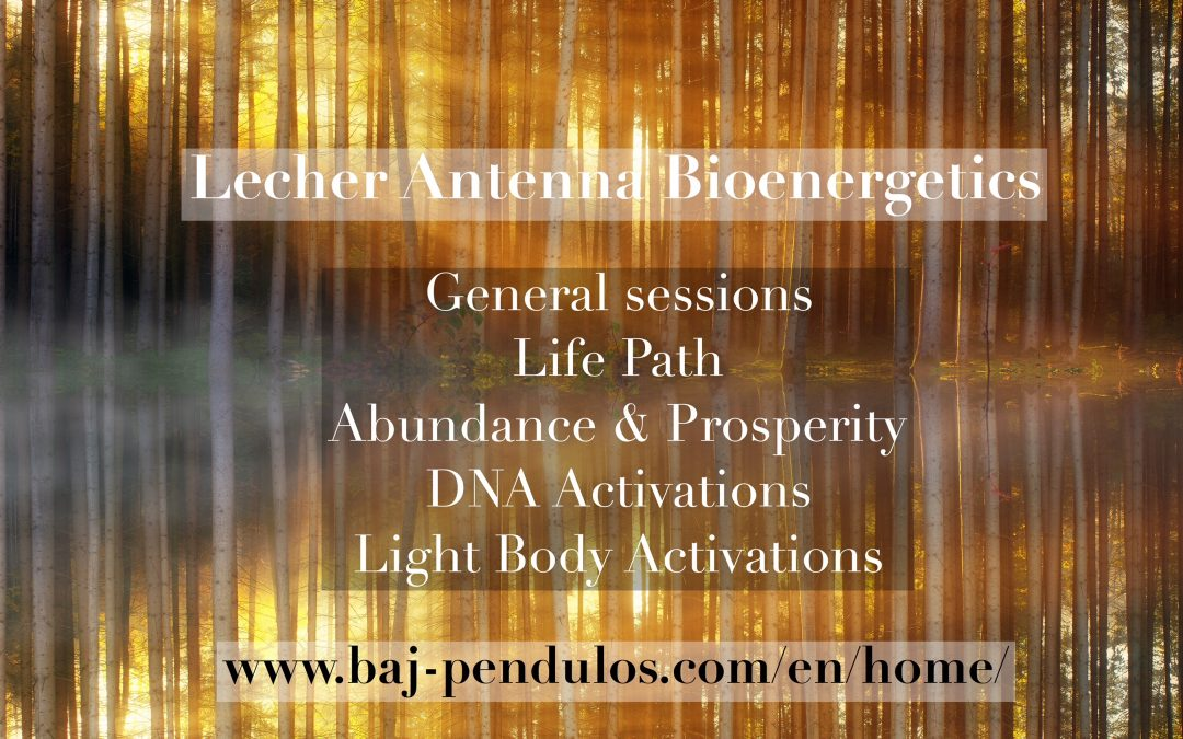 Lecher Antenna Bioenergetics