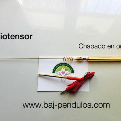 11.1 Biotensor